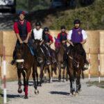 Corsa, negativi i controlli antidoping sui cavalli